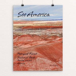 "Petrified Forest National Park 2 by Jane Rohling 12"" by 16"" Print / Unframed Print See America"