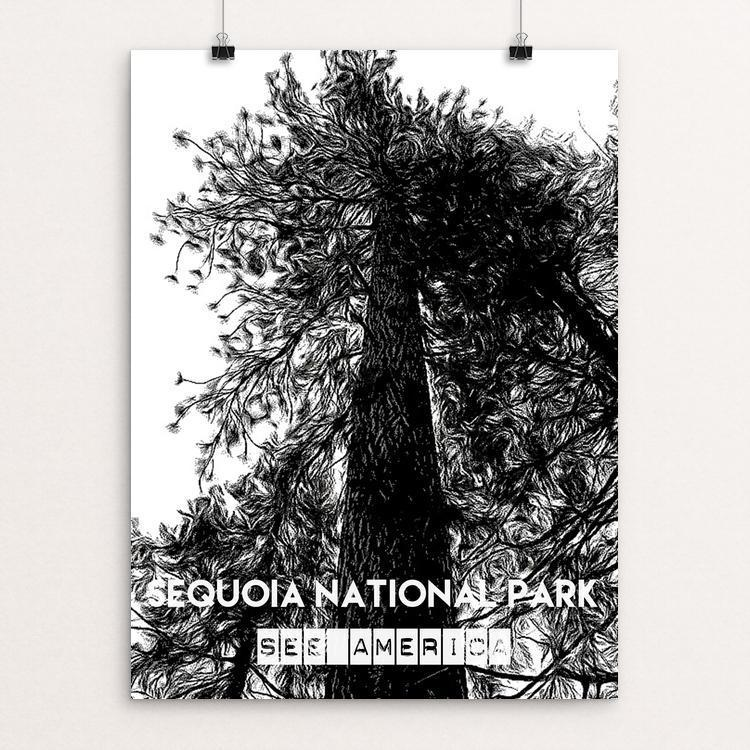 "Sequoia National Park - Tree by Bryan Bromstrup 12"" by 16"" Print / Unframed Print See America"