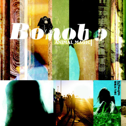 Bonobo - Animal Magic (COLOR VINYL) - Tru Thoughts TRU-007X - 2xLP, Vinyl