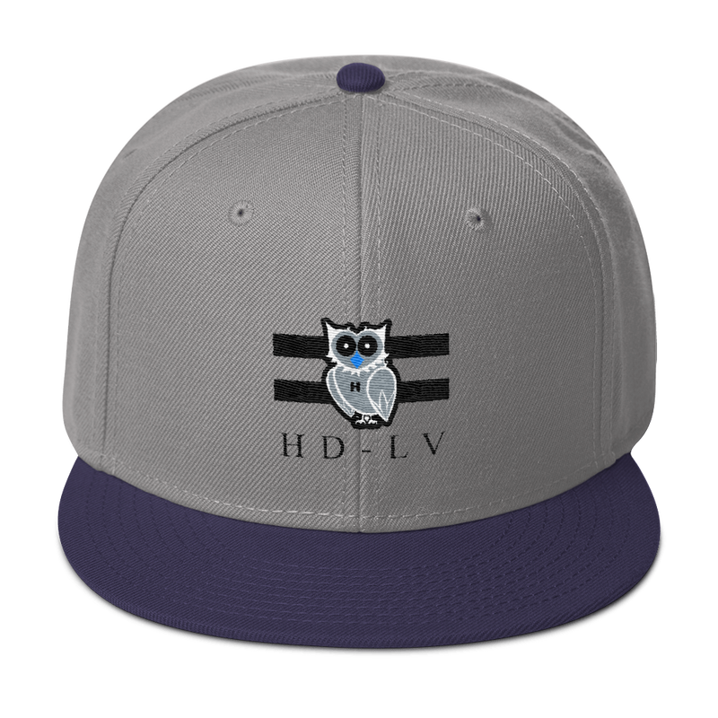 HD-LV Inverted Classic Snapback - Grey & Navy