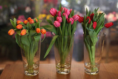 Spring Special : Tulips Hand bouquet