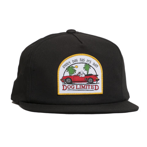 Every Dog Has Its Day Snapback