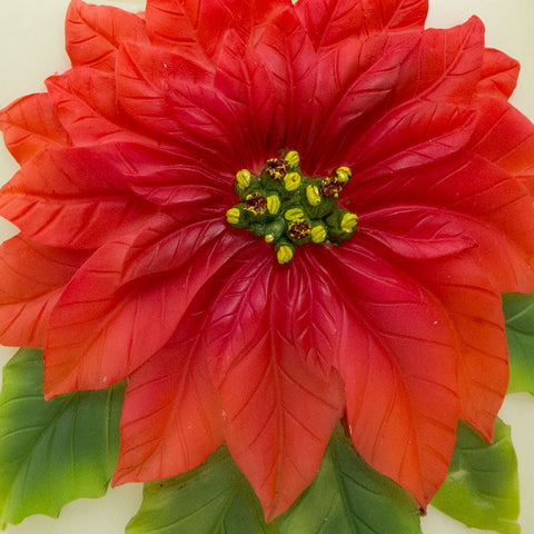 Poinsettia Memory Lamp