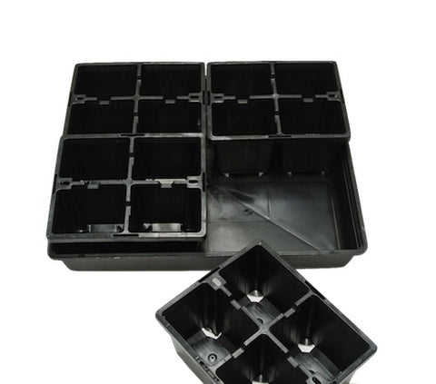 4 Cell Large Punnet + Hydro tray  / Seedling & Plant Cutting Propagation