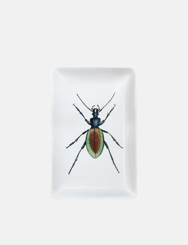 Magpie Beetle Trinket Tray (Rectangular) - White