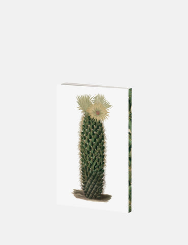 Cubic Cactus Notebook - Green - Article