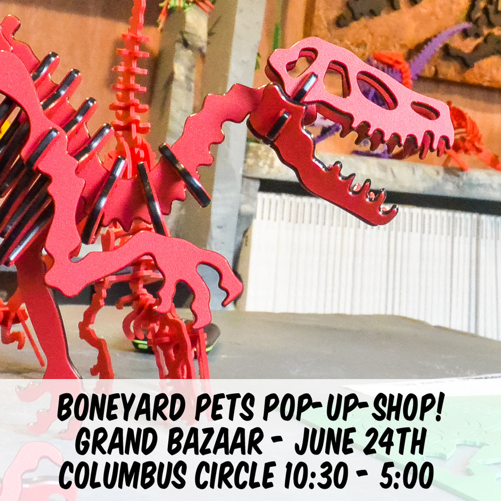 Boneyard Pets LIVE this Sunday, June 24th in NYC!
