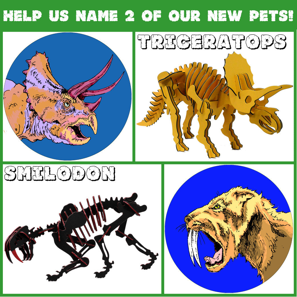 NEW DINOSAUR NAMING CONTEST!