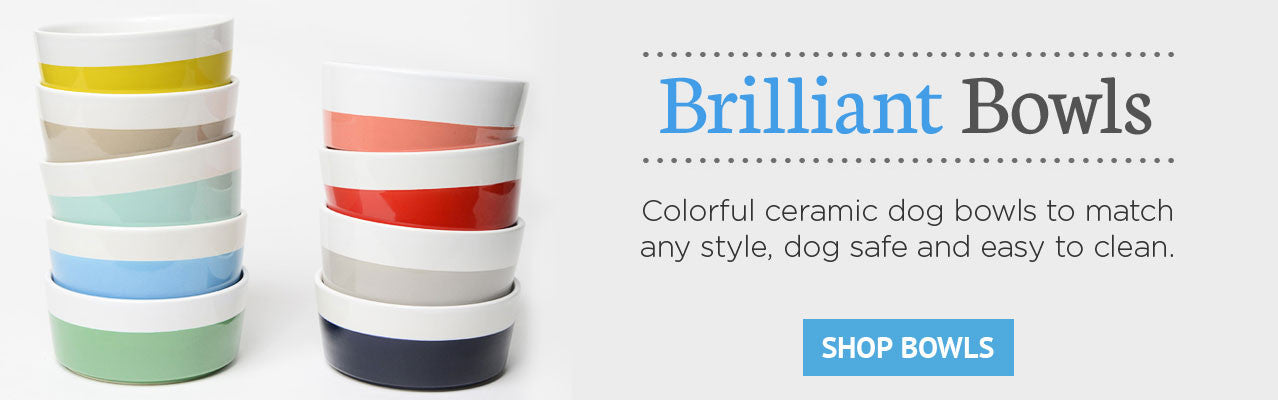 Brilliant Bowls -- Colorful ceramic dog bowls to match any style, dog safe and easy to clean.