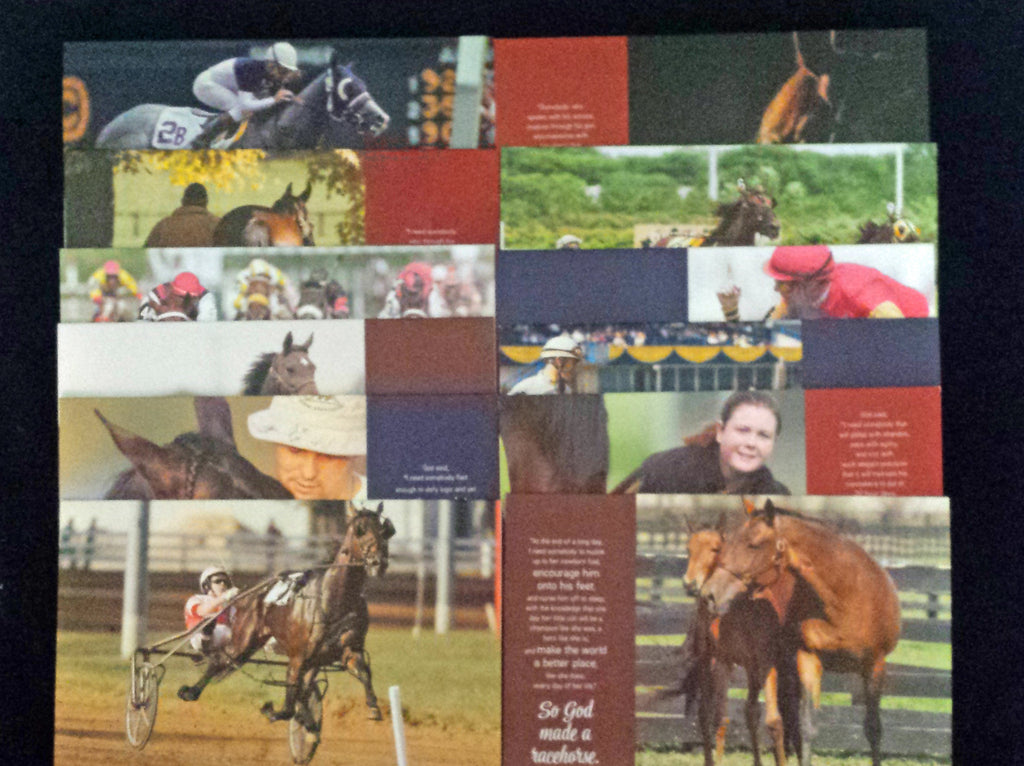 So God Made a Racehorse Note Cards