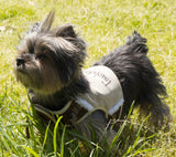 Touchdog ® 'Tough-Boutique' Adjustable Fashion Designer Pet Dog Harness and Leash Combination