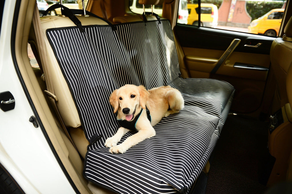 Pet Life ® 'Open Road' Full Back Seat Safety Child Pet Cat Dog Car Seat Carseat Cover Protector Navy Blue And White Stripe