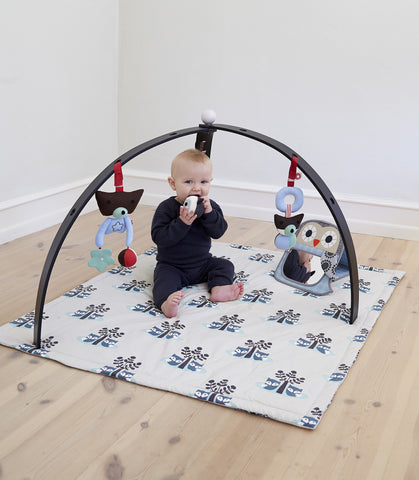Baby Spyder Black Activity Play Gym