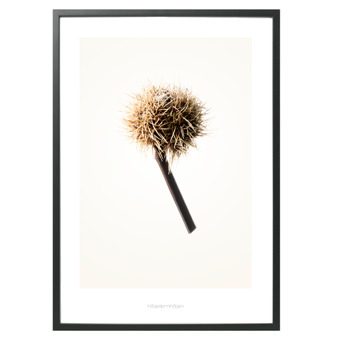 Hagedornhagen Art Print - 'Gold' Series #1