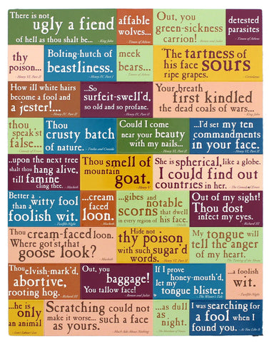The Finest Shakespearean Insults Magnetic Set