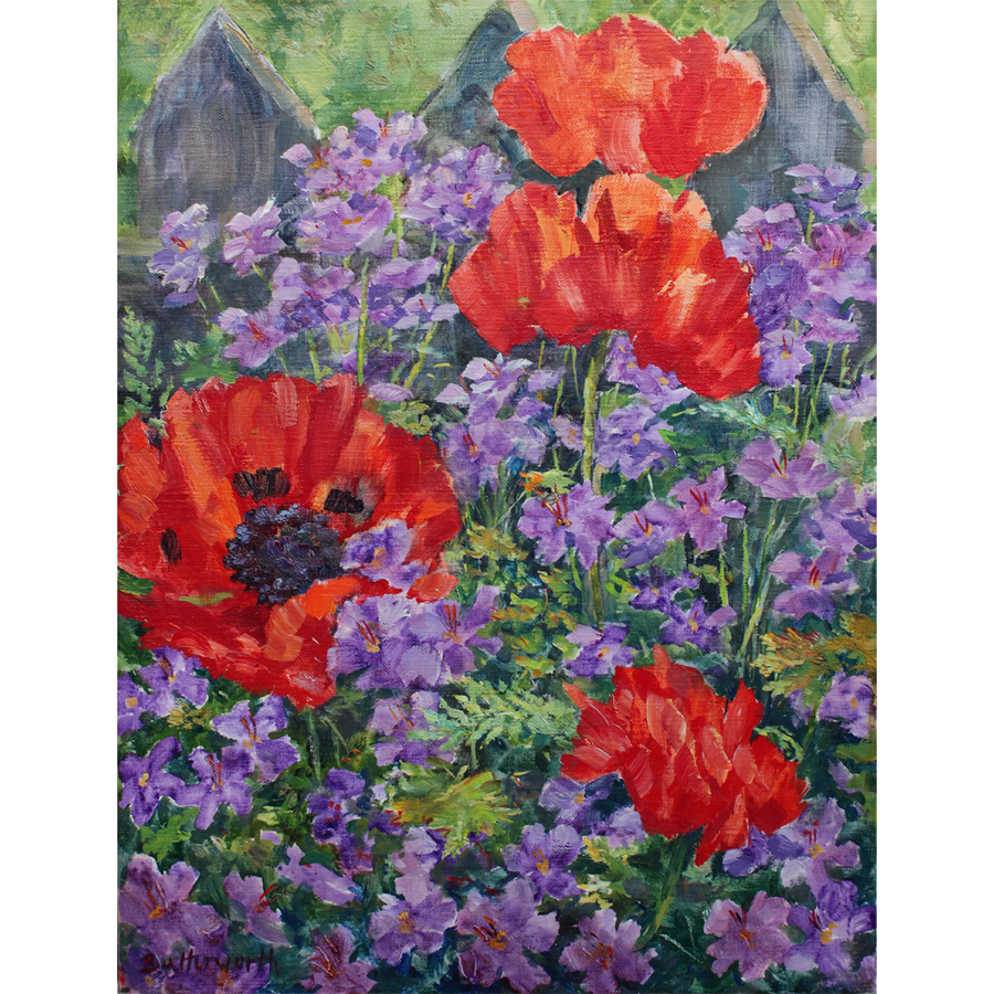 Poppies and Geraniums