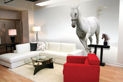 Arlon DPF 207 - 6-mil Calendered, Matte Removable Wall Decoration Film.