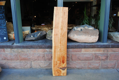 Honey Locust Slab