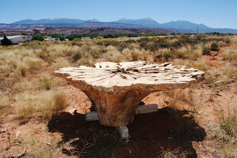 Cottonwood Root Ball Table