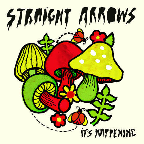 Straight Arrows - Its Happening CD