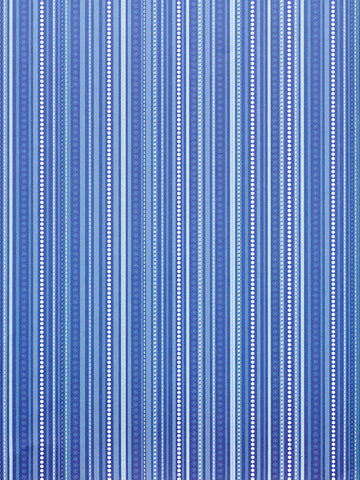 Winter Blue Stripe Printed Photography Backdrop / 2594