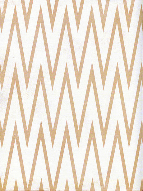 Sharp Chevron Photography Background / 2643 - DropPlace