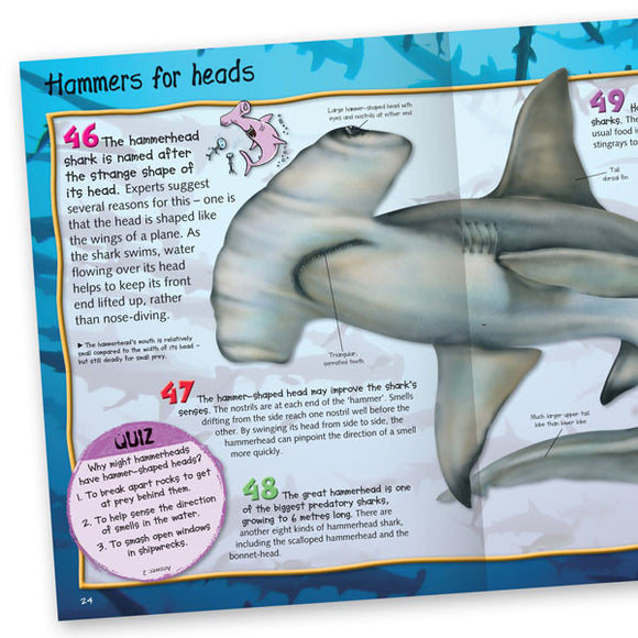 Pocket Edition 100 Facts Sharks