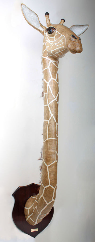 Giraffe Wall Mounted African Animal Head