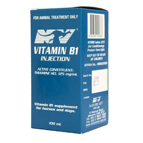 Vitamin B1 Injection (100mL)