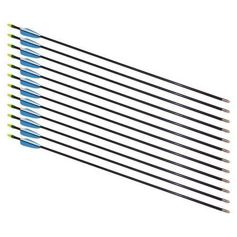 "28"" Fiberglass Arrows - 72 Arrows - Ohio Fitness Garage - Olympia -Arrows Equipment"