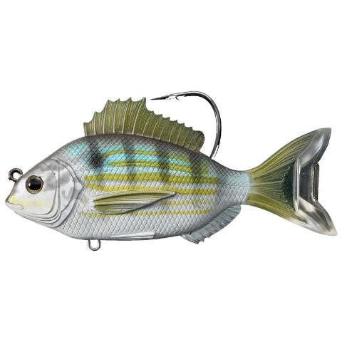 Pinfish 4in - Live Target