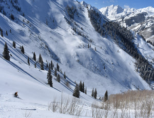 Aspen Lift Access Backcountry Ski/Ride