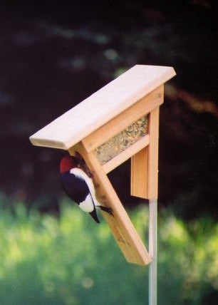 Clinger Woodpecker and Peanut Feeder