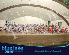 2019 - Concert Orchestra