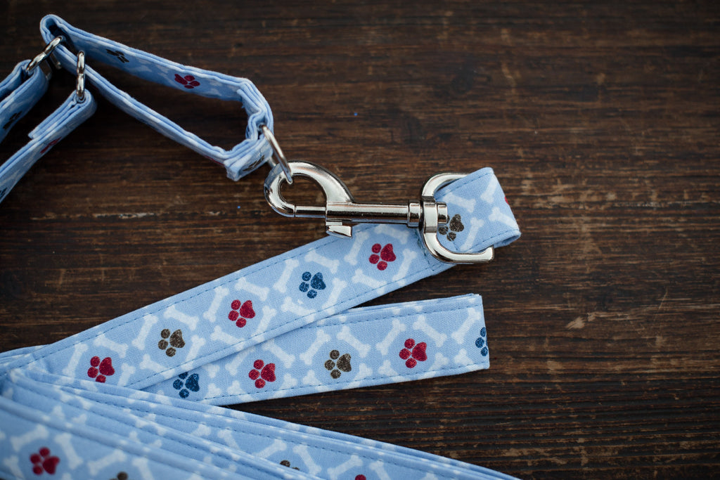 Leash & Collar (Blue w/ Paw Pattern)