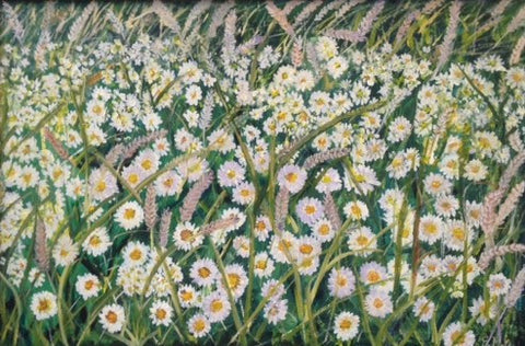 Daisies and Wheat