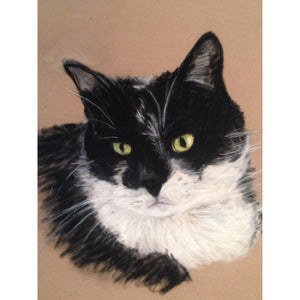 Beautiful Original Animal Portraits Fine Art