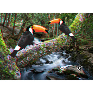 3D EFFECT Augmented Reality Toucan Love Valentines Greetings Card
