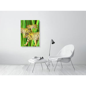3D ANAGLYPH Three Gold Tigers on Green Art Print