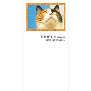 fotofitz tabby cat mothers day card