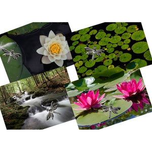 Dragonflies Photographic Note Cards & Envelopes with Real Dragonfly Charms - Set of Four