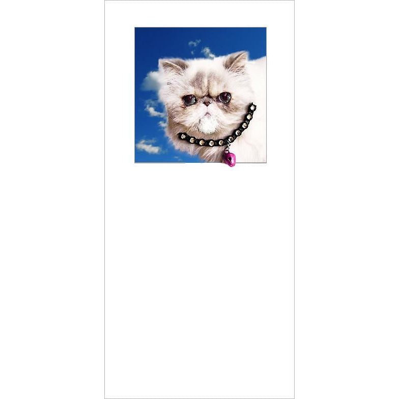 posh pawz persian cat kitten greeting card