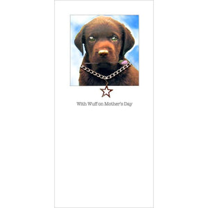 posh pawz chocolate labrador mothers day card