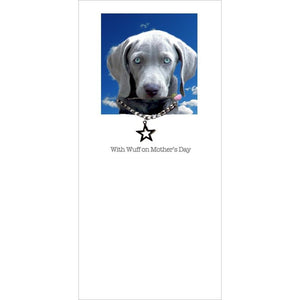 posh pawz weimaraner puppy mothers day card