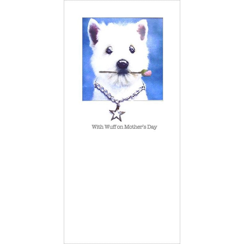 posh pawz chihuahua mothers day card