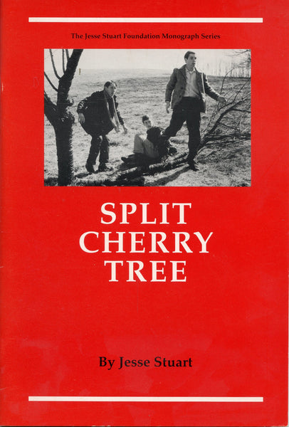Split Cherry Tree 1990