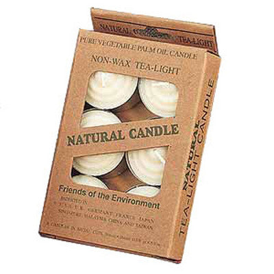 12 Natural Non Wax Tealight Candles
