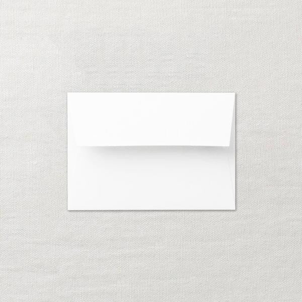 Extra Envelopes (set of 20)