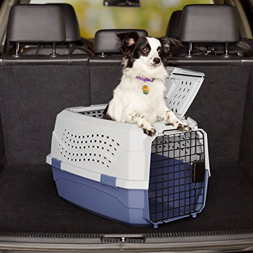 23-Inch Two-Door Top-Load Pet Kennel: Grey and Blue