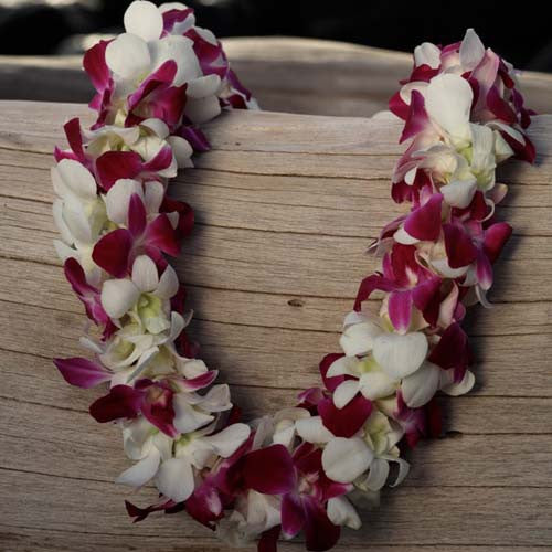 Purple / White Deluxe Lei